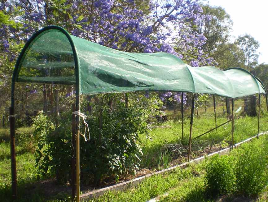 Sun and heat protection Aussie Organic Gardening
